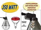 Titan Incubators Lampada riscaldante e Lampadina da 250W