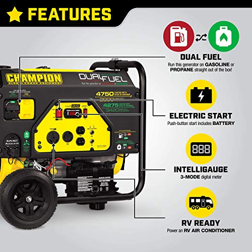 Champion Power Equipment 76533 3800-Watt Dual Fuel RV Ready Portable Generator with Electric Start