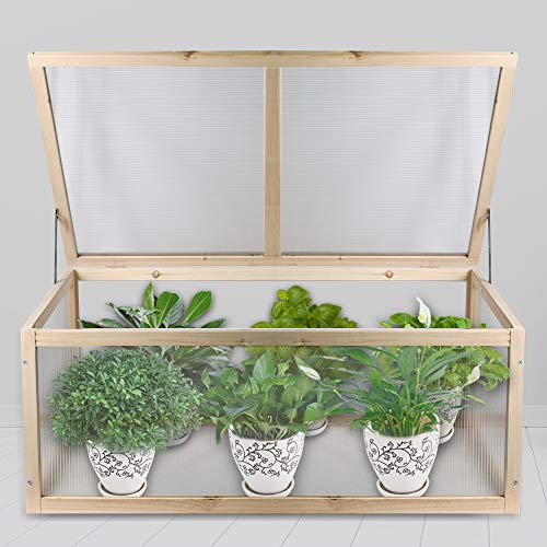 Best cold frame