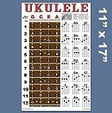 Ukulele Fretboard & Chord Chart Instructional Poster GCEA Tuning Uke Soprano Concert Tenor A New Song Music 11'x17'