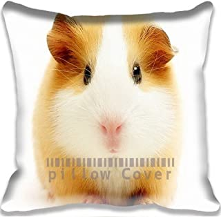 Hamster Yellow Colorful Cotton and Polyester Home Decorative Throw Pillow Cover Cushion Case 18x18Inch