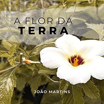 A Flor da Terra