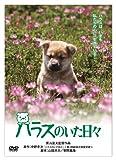 「きな子~見習い警察犬の物語~」DVD発売記念 犬だワンダフルキャンペーン ハラスのいた日々 (限定生産) image