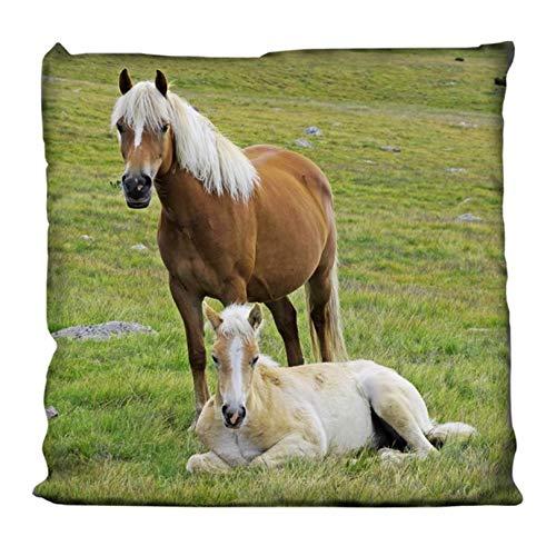 KK Kissen Kuschelkissen Dekokissen mit Pferd 40 x 40 cm