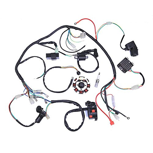 Metermall Home Electric Wiring Harness Wire Loom CDI Stator Assembly for ATV QUAD 125CC-250CC
