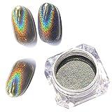 1g/Box Lucido Laser Chiodo Olografico Polvere Arcobaleno Unghie Glitter Polvere Cromo Pigmento Manicure Pigmenti Unghie Arte Decorazioni