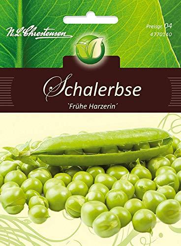 Schalerbsen, Frühe Harzerin