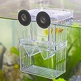 Senzeal Aquarium Fish Breeder Box Plastic Fish Isolation Breeding Box Hatching Incubator Box for Baby Fish Shrimp Clownfish Guppy