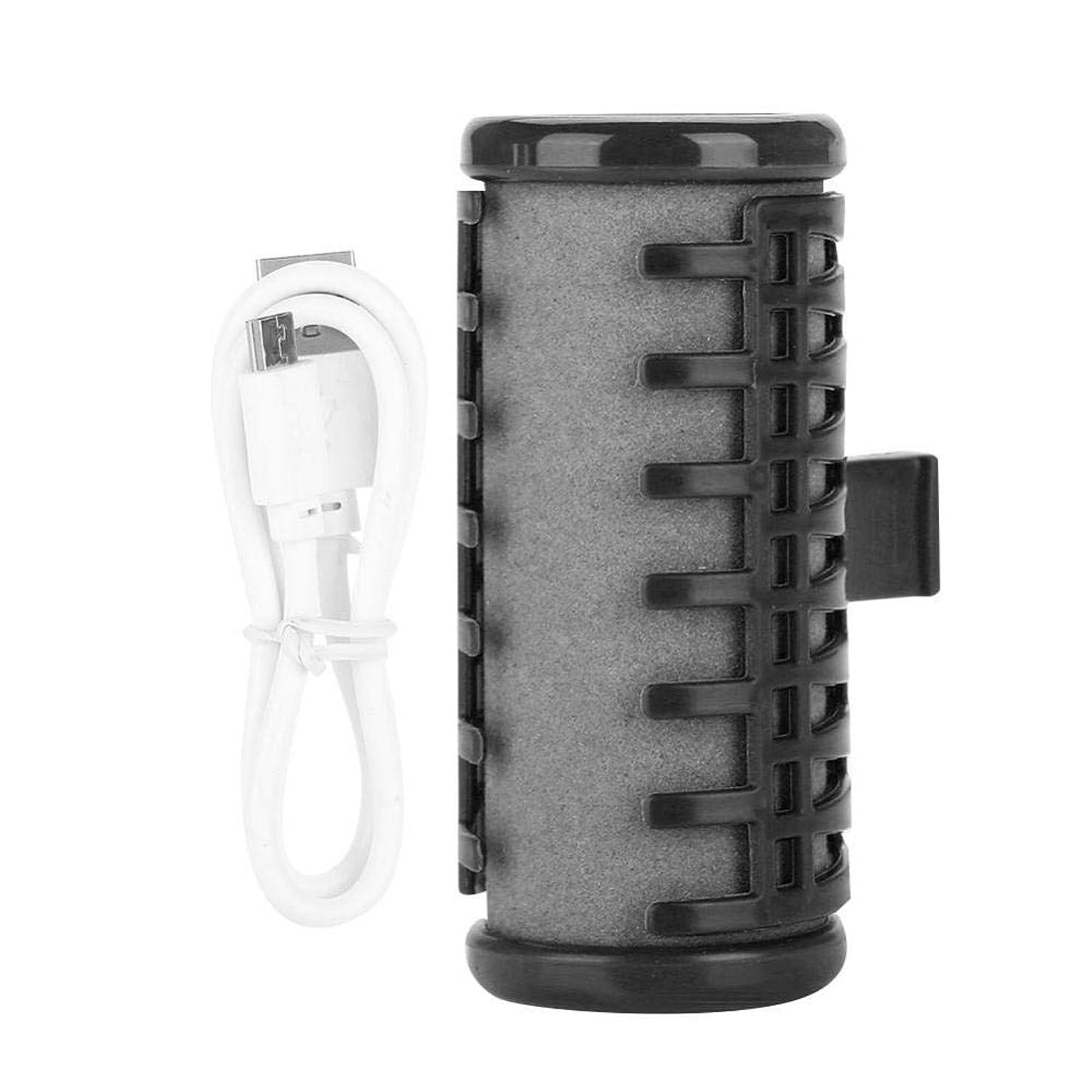 軽量学習者小麦電気ヘアローラー ヘアカーラー 巻きカーラー USB充電式ワイヤレスヘアローラー 巻き髪 持ち運び便利 携帯用 美容用品 DIYヘアスタイルツール サロン 家用(ブラック)