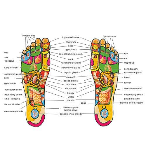 Magnetische Massage-Einlegesohlen Akupunktur-Einlegesohlen Schuhmatte Gesundheit Fußmassage Gewichtsverlust Einlegesohlen für Männer und Frauen