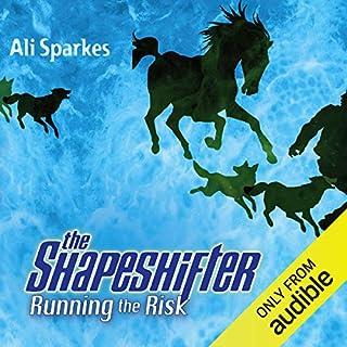 Running the Risk cover art