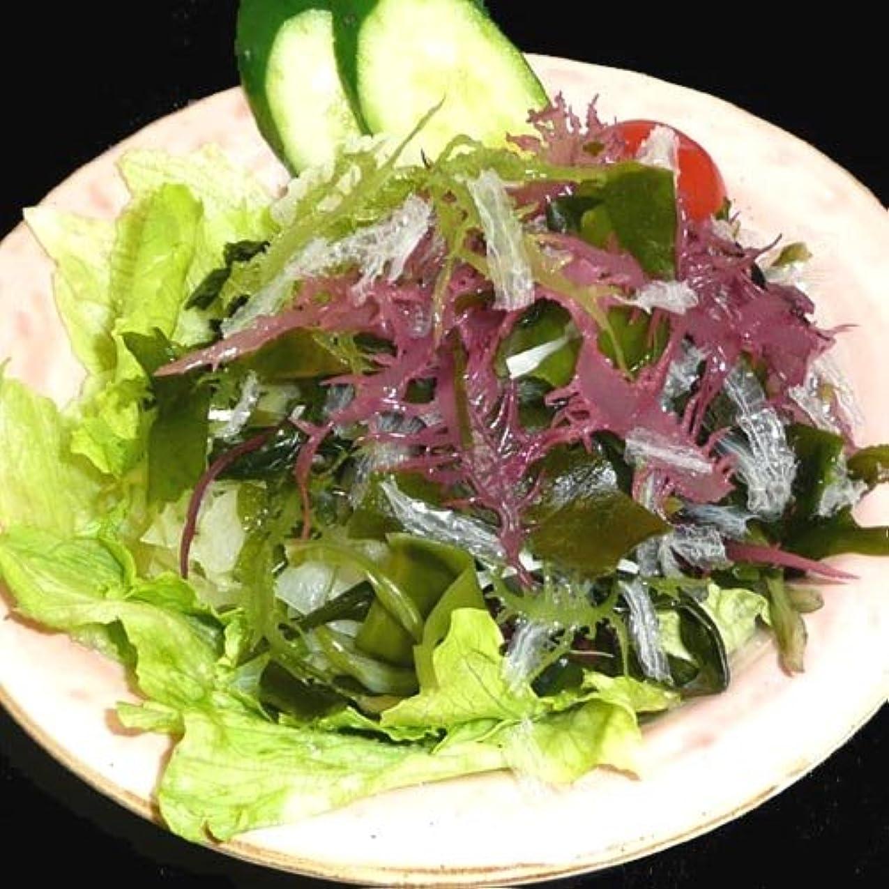 構想するレシピ辛なサンエイオンラインショップ 業務用海藻かんてんダイエットサラダ 100g 9食分