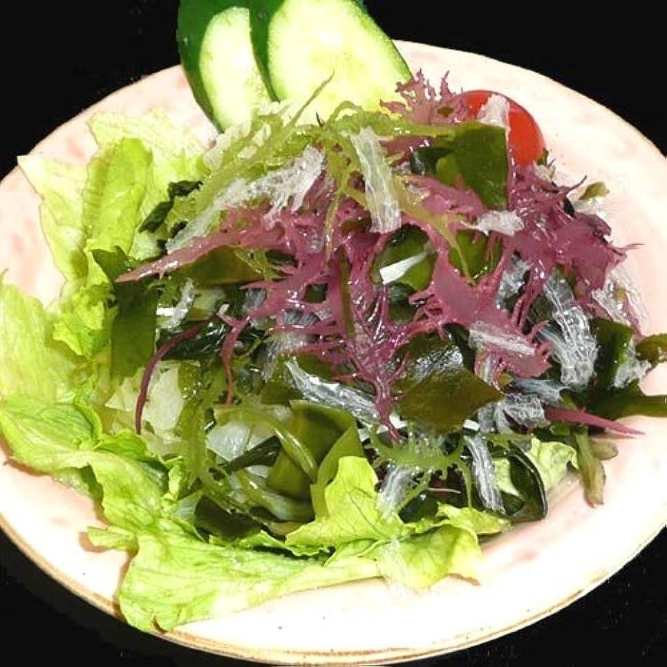 泥棒感嘆符陽気なサンエイオンラインショップ 業務用海藻かんてんダイエットサラダ 100g 9食分