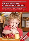 Grundlagen der Elementarpädagogik: Unverzichtbare Eckwerte für eine professionelle Frühpädagogik