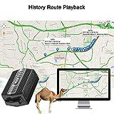 IMG-2 winnes gps tracker localizzatore per