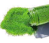 FAIRY TAIL & GLITZER FEE Sabbia Decorativa 800 g, Verde, Sabbia Colorata, Granulato, Decor...