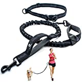 CHUNKY PAW Hands Free Dog Leash for Running, Walking, Training, Hiking - Durable Dual Handle Waist Leash with Reflective Bungee for Medium and Large Dogs