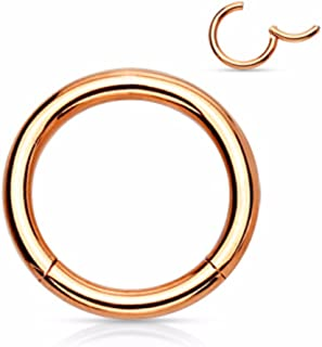 Rose Gold Titanium Anodized Precision 316L Surgical Steel Hinged Segment WildKlass Simply Clicker Rings