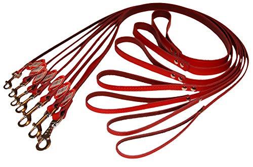 Dino Hundeleine, Echtleder, 120 cm lang, 1,8 cm x 120 cm, Rot