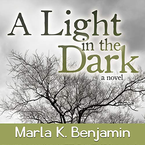 A Light in the Dark audiobook cover art
