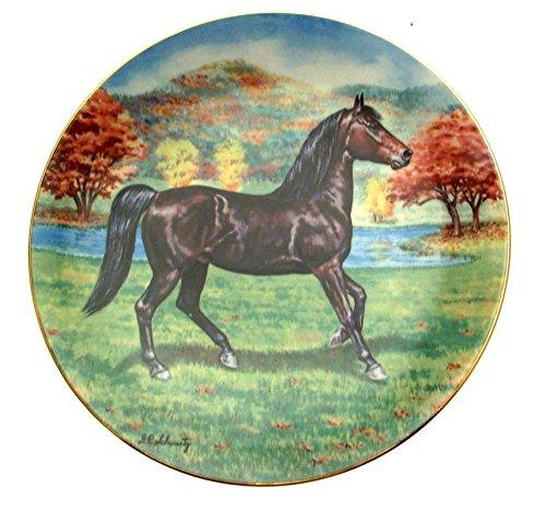 Pferd Teller Der Morgan Wasserspeier Pferde der amercas Donald Schwartz