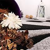 Paco Home Designer Teppich mit Konturenschnitt Modern Grau Schwarz, Grösse:80x150 cm - 3