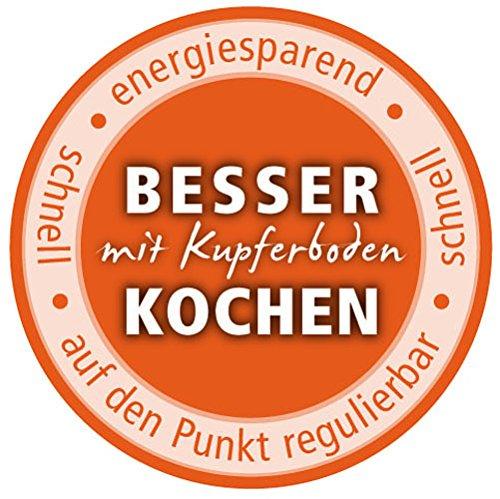 Schulte-Ufer All / Food Steamer Profi-Line i, Steam Pot, Stainless Steel 18/10, 20 cm, 0128-20 i