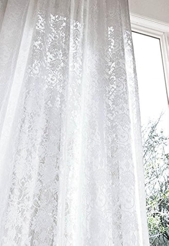 秀でる採用するコンテンポラリーアスワン 優雅な刺繍調モチーフのレース カーテン1.5倍ヒダ E6400 幅:100cm ×丈:200cm (2枚組)オーダーカーテン