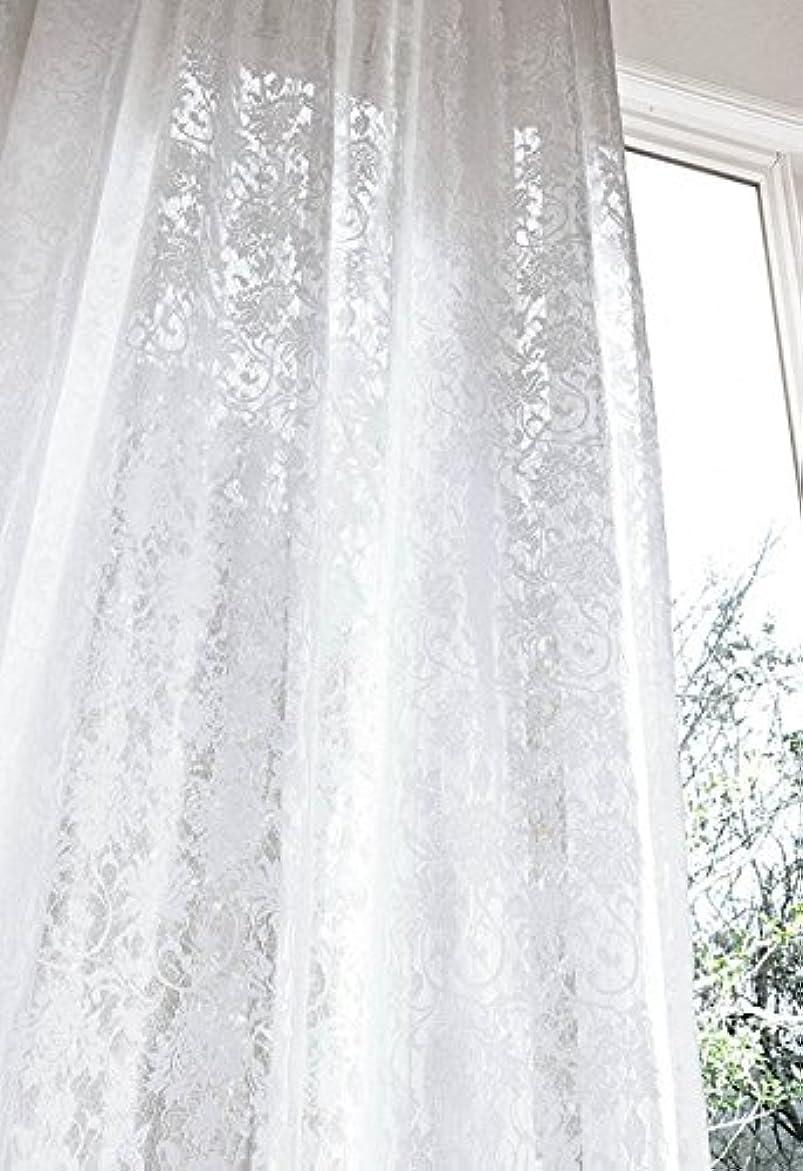 青写真チート闘争アスワン 優雅な刺繍調モチーフのレース カーテン2.5倍ヒダ E6400 幅:100cm ×丈:120cm (2枚組)オーダーカーテン