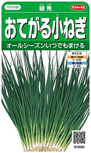 サカタのタネ 実咲野菜3800 おてがる小ねぎ 緑秀 00923800