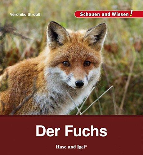 Der Fuchs: Schauen und Wissen!