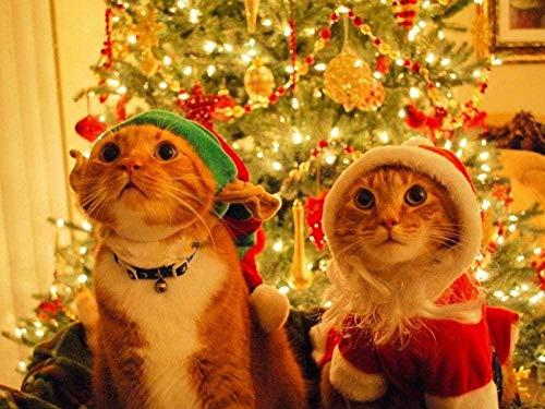 HXXCB - 1000 Piezas Puzzle -Disfraz de Gato - Rompecabezas para nios Adultos Juego Creativo Rompecabezas Navidad decoracin del hogar Regalo