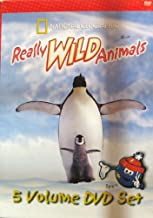 Really Wild Animals - 5 Volume DVD Set