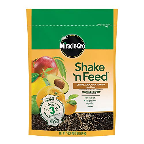 Miracle-Gro Shake 'n Feed Citrus, Avocado, and Mango Plant Food