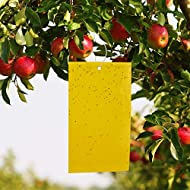 LUTER 30-Pack Dual-Sided Yellow Sticky Traps for Flying Plant Insect Like Fungus Gnats, Flying Aphid, Whiteflies, Leaf Miners, Other Flying Plant Insects (4X8 Inches, 30pcs Twist Ties Included)