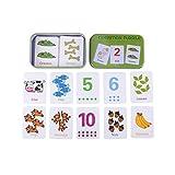 Lernkarten der Tiere, Bildkarten, Wortkarten, Digitale Karte 1-10 | Lernen mit Tierkarte für Kinder, 30-teilig | Stay Inspired! by Lisa Wirth -