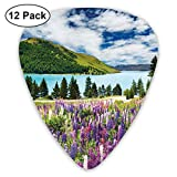 Guitar Picks12pcs Plectrum (0.46mm-0.96mm), Floral Mountain Meadow Valley By Lake With Blossom Petals Inspiration Picture,For Your Guitar or Ukulele