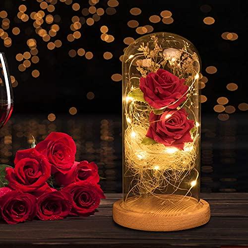 N&T NIETING Rosa de seda roja y luz LED bajo cúpula de cristal para San Valentín, cumpleaños, boda, día de la madre, aniversario, Navidad, decoración principal.
