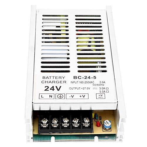 Húmedo Diesel Generador Batería Cargador, 50/60Hz con Aluminio Aleación C.A. 160-250V 24v (Plata)
