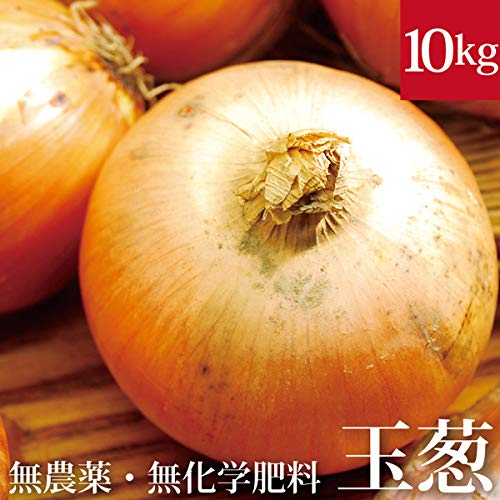 北海道 玉ねぎ 10kg 無農薬・無化学肥料