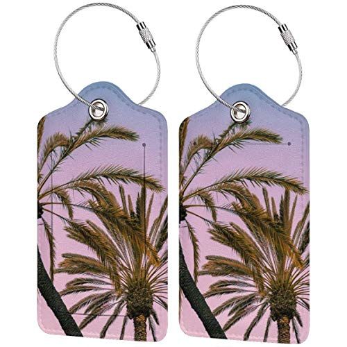 Bunte Kätzchen Strand helle Kokosnuss Lage Tags Tasche PU Leder Koffer Etiketten Design Reise mit Rückseite Sichtschutz mit Stahlschlaufen