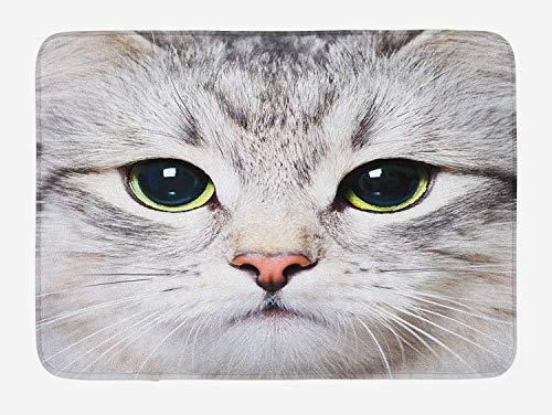 AoLismini Katze Badematte, süße Katze Print Kätzchen Kitty Closeup Portrait Digitalfotografie süße Haustier, Plüsch Bad Teppich mit Rutschfester Halterung, Elfenbein grau