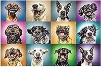 大人のためのジグソーパズル1000ピース面白い犬の肖像画すべてのピースはユニークなピースが完璧にフィットします50X75Cm