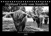 Highland Cattle vom Nordlicht - Faszination Hochland Rind (Tischkalender 2022 DIN A5 quer): Schwarz-Weisser Einblick in das Leben einer Herde (Monatskalender, 14 Seiten )