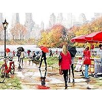 数字によるDIYデジタル絵画パッケージ雨の後公園油絵壁画キットぬりえ壁アート画像ギフトフレームレス40×50センチ