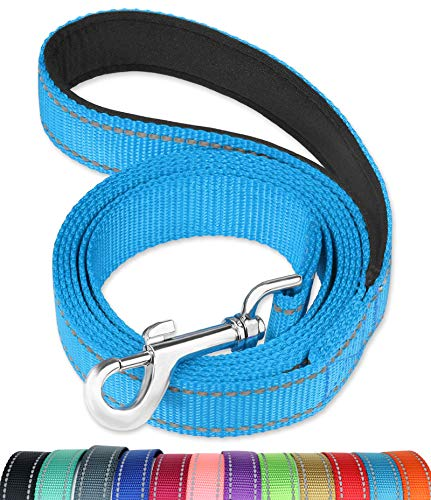 FunTags 6FT Reflective Dog Leash with Soft Padded Handle for Training,Walking Lead for Large & Medium Dog,1 Inch Wide,SkyBlue