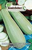 Semi Di Zucchina Zucchino Bianco Di Palermo Sementi Orto Giardino