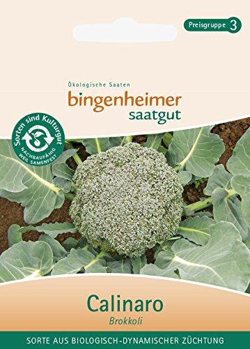 Brokkoli Calinaro,aus Biologisch-Dynamischer Züchtung, 1 Portionstüte