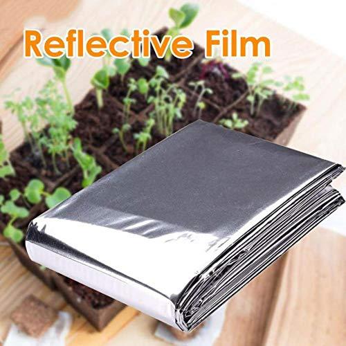Reflective Film Pflanzenbewuchs