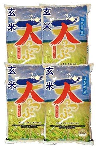 福島県産 玄米 石抜き処理済 天のつぶ 20kg(5kg×4袋) 令和2年産
